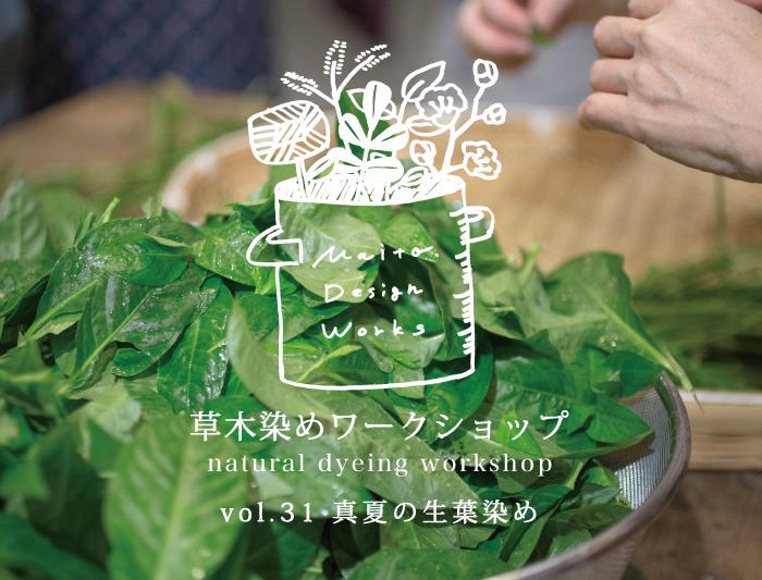 8/7・8 蔵前 草木染めワークショップ ~真夏の生葉染め〜