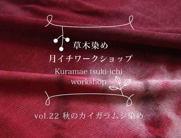 11/1・14・15 蔵前 草木染めワークショップ 〜カイガラムシ染め〜