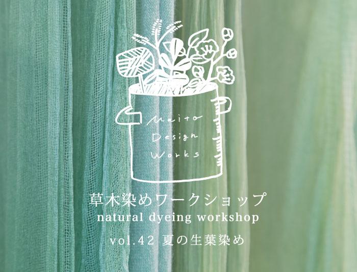 7/23 蔵前 草木染めワークショップ ~夏の生葉染め~